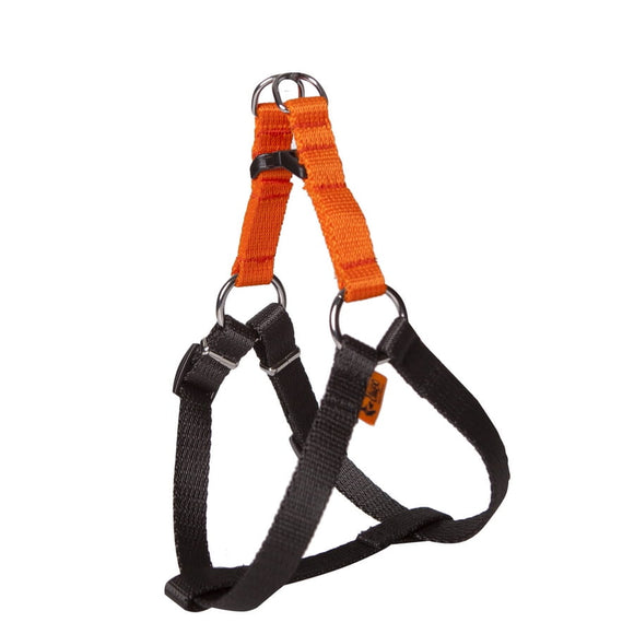 Dingo Energy Harness - Targa Pet Shop
