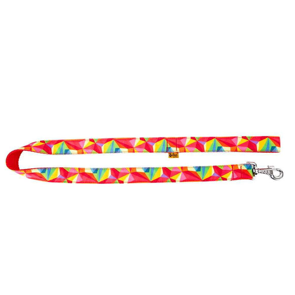 Dog America Colourful Leash - Targa Pet Shop