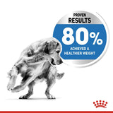 Royal Canin Medium Light Weight Care Dry Dog Food - Targa Pet Shop