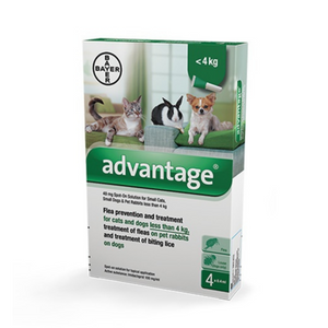 Advantage Small Dog, Cat, Rabbit under 4 kg