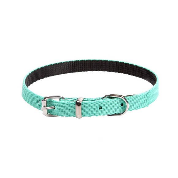 Dingo Energy Dog Collar for Small Dogs Mint