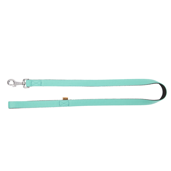 Dingo Energy Leash Mint