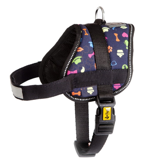 Dingo Colourful America Strong Harness - Targa Pet Shop