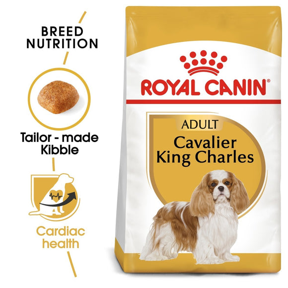 Royal Canin Cavalier King Charles Dry Adult Dog Food - Targa Pet Shop