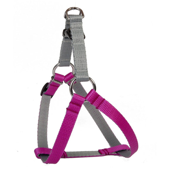 Dingo Silver Energy Harness - Targa Pet Shop
