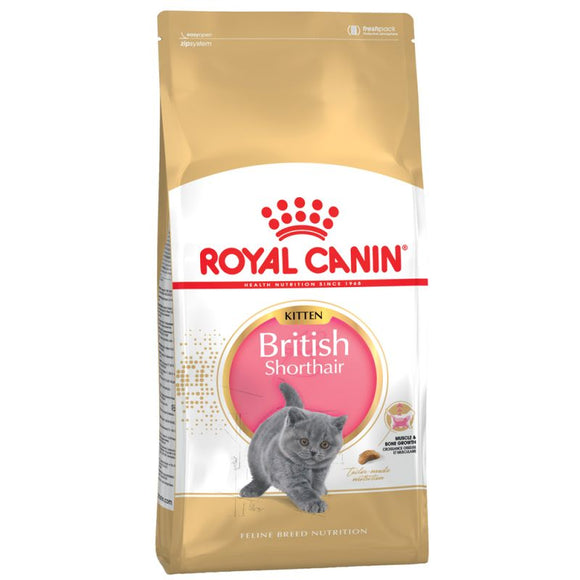 Royal Canin British Shorthair Kitten Cat Food - Targa Pet Shop