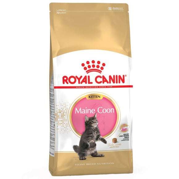 Royal Canin Maine Coon Kitten Food - Targa Pet Shop