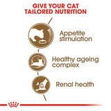 Royal Canin Ageing 12+ Senior Cat Food - Targa Pet Shop