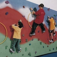 Build Your Own Climbing Wall Kit 40'L X 8'H