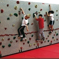Groperz Traverse Climbing Wall Package 24'