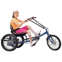 Low Rider Recumbent Trike 1 Speed With Electrical Assist