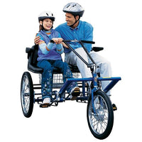 Side By Side Trike Electrical 1 Speed