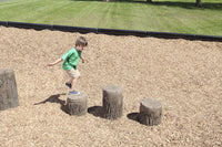 Tree Stumps - Set Of 3 (2-5 Yr.) Includes 2 Small And 1 Medium Stump