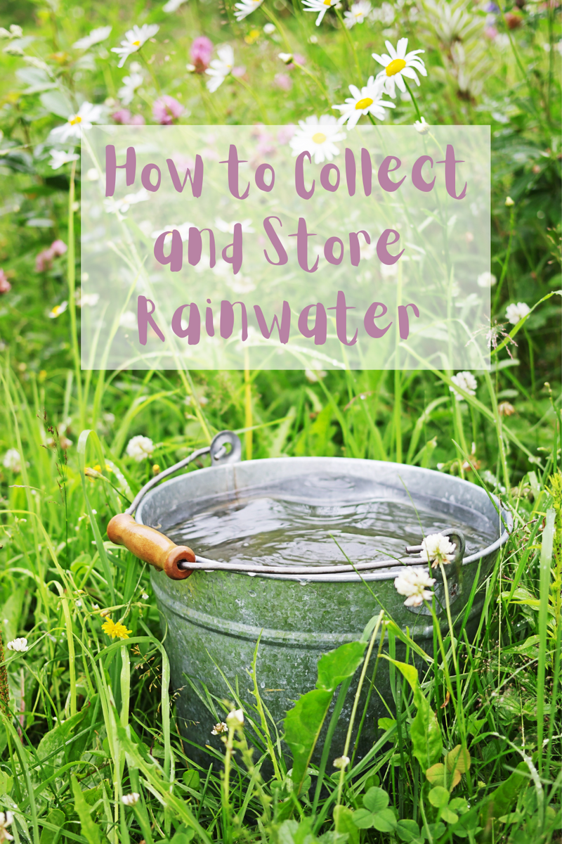 How to Collect and Store Rainwater