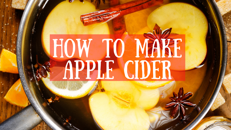 Best Homemade Apple Cider Recipe
