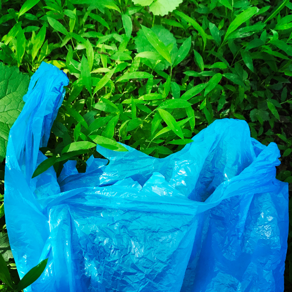 What You Need to Know About Biodegradable Packaging: Difficult for Bioplastics to Break Down