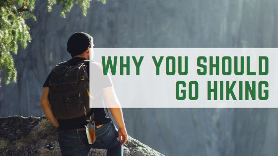 Reasons You Should Go Hiking