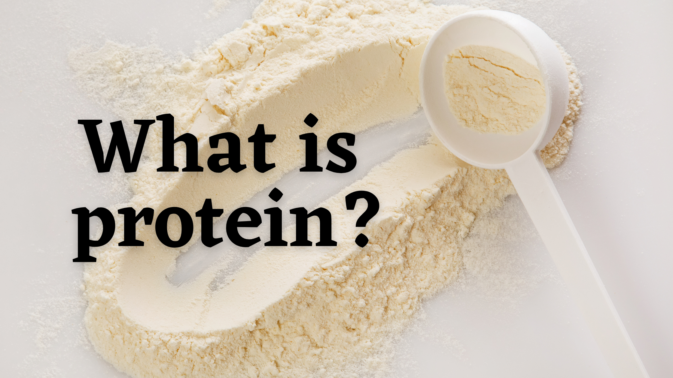 How Much Protein Do You Need? What is Protein?