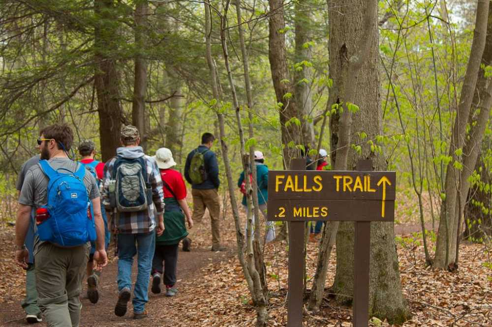 Top 5 Work Event Ideas: Hiking