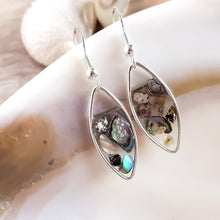 Load image into Gallery viewer, Abalone Seashell Earrings