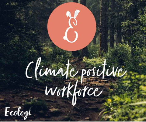 Ecologi climate positive workforce image showing a gorgeous green woodland, the Easterkins logo is visible too.