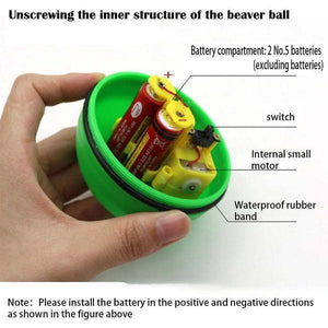 Electric Beaver Ball