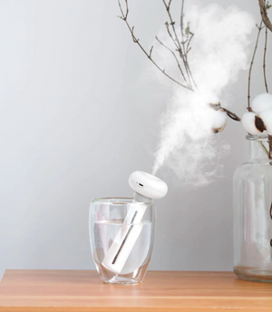 H2O Portable Humidifier