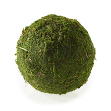 Load image into Gallery viewer, Moss Sphere