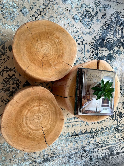 Natural Tree Stump Side/Coffee Table