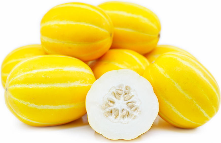 Korea Yellow Melon