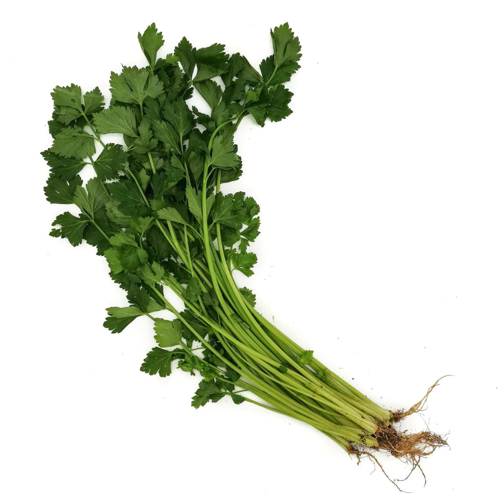 Chinese Celery 100g