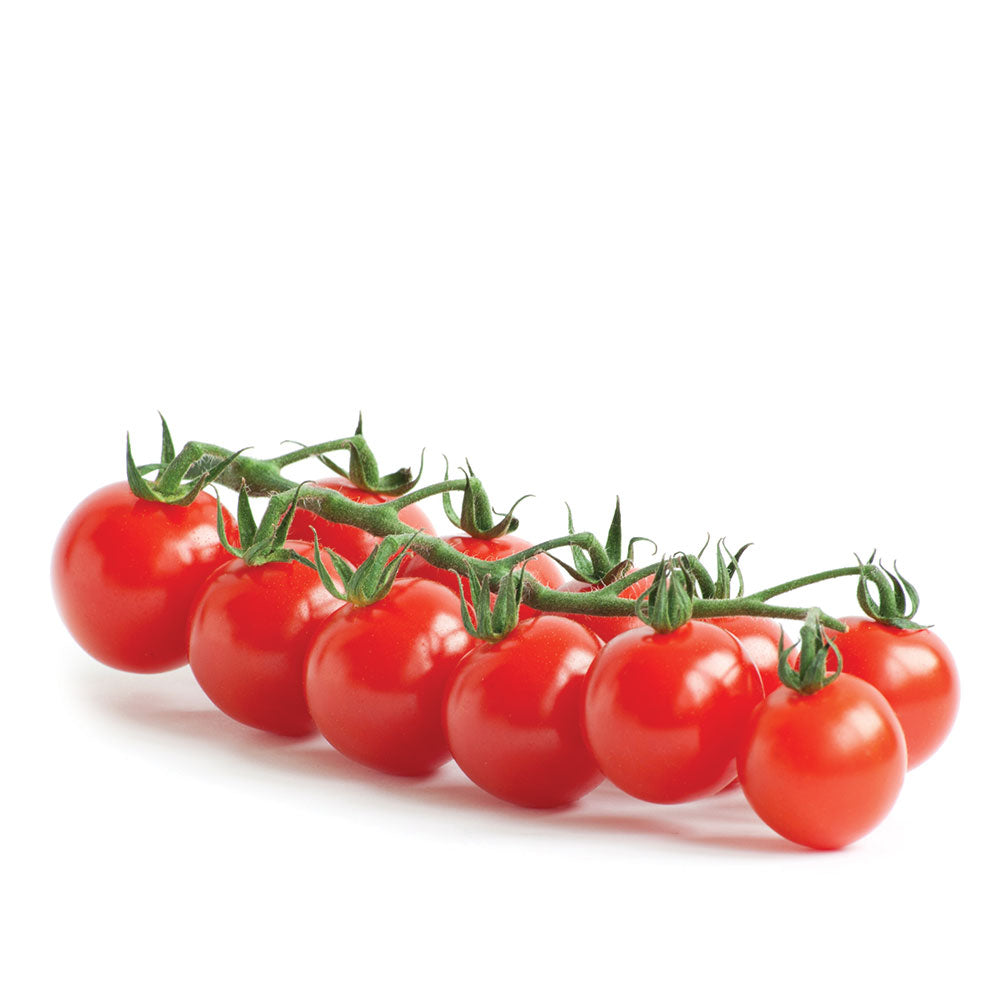 Holland Cherry Tomatoes (1 Box)