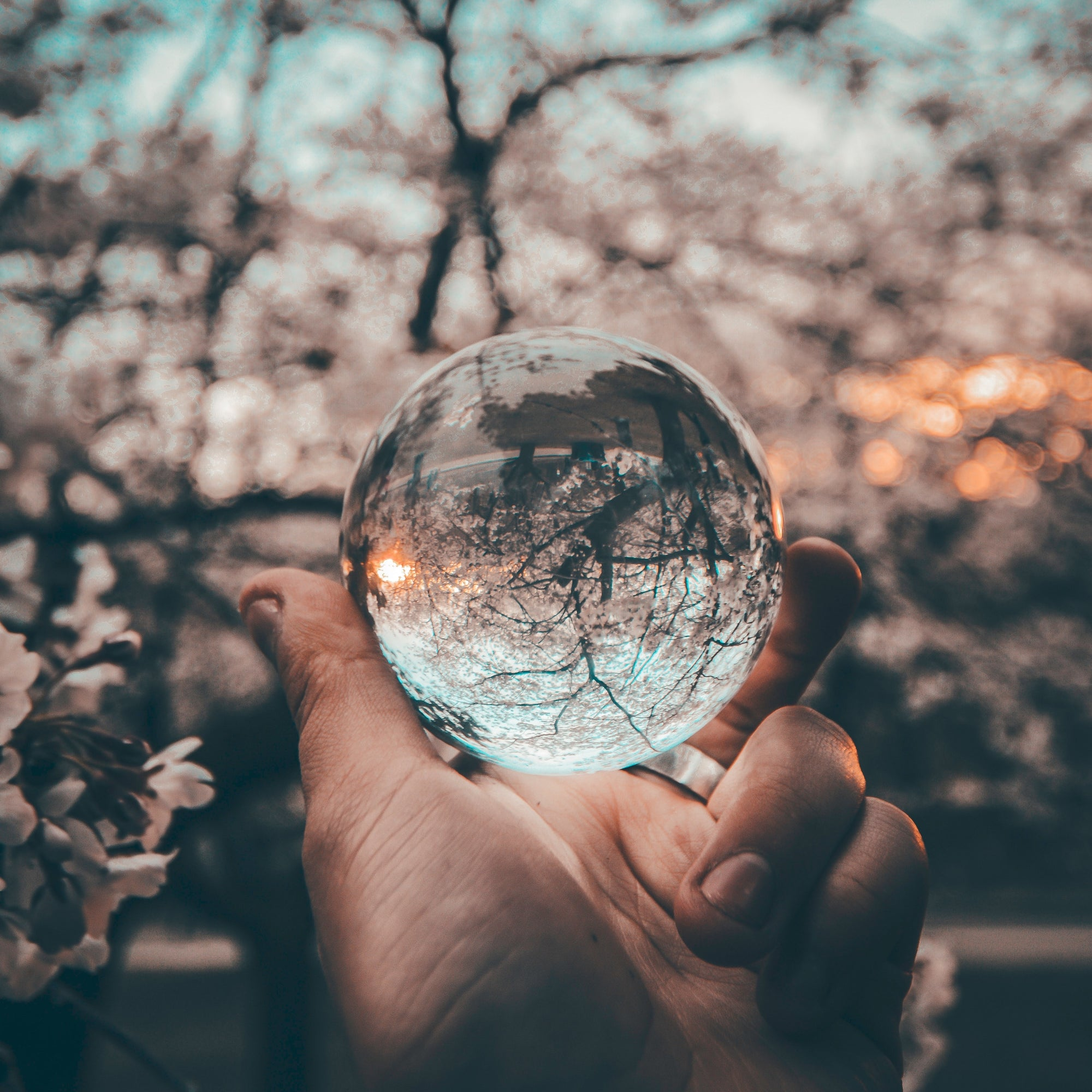 Crystal Ball | A great advantage of mass hysteria facilitates is the ability to pause and reflect. | Blake Bauer