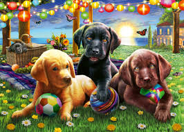 Puppy Picnic  100 pc