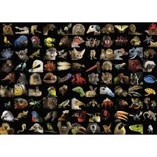 National Geographic - Amazing Animals 1000pc