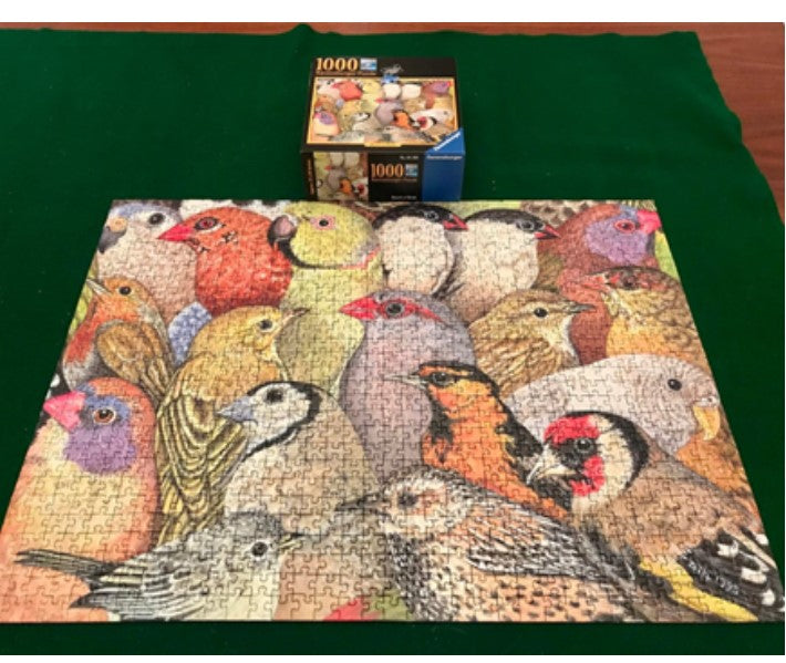 Bunch of Birds  1000 pc Puzzle