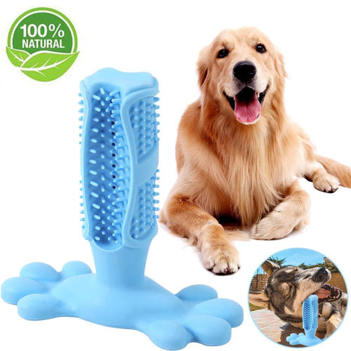 Cat, Dog Toothbrush and Chew Toy