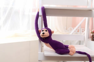 60cm Long Arm Monkey