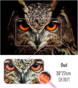 Diamond Painting - Owl