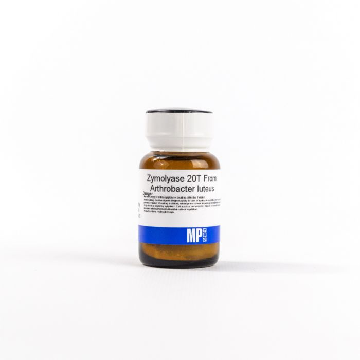MP Biomedicals Zymolyase, 20T from Arthrobacter luteus, 1 g (08320921)