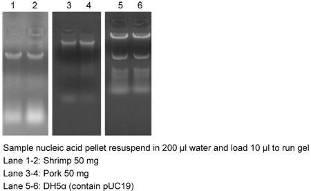 Genomic DNA Isolation Reagent