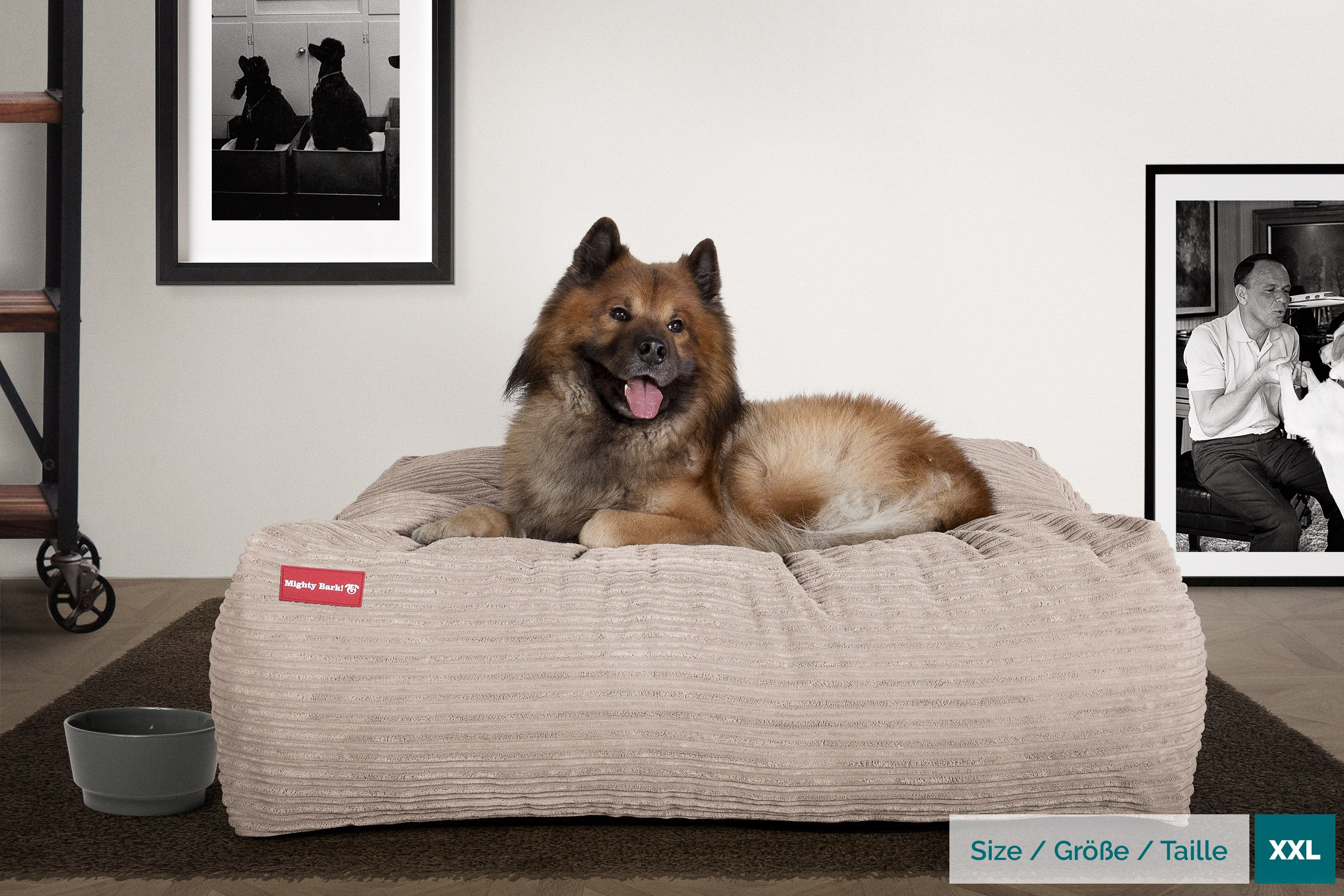 Mighty Bark™ Crash Pad Dog Bed - Cord Mink - Large