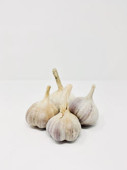 Souto Farms AB 2020 Russian Garlic