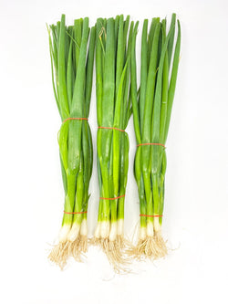 Locally BC Grown - Green Onion