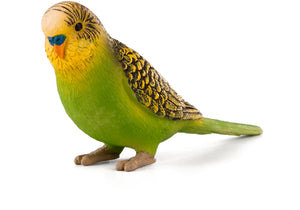 Animal Planet Budgerigar Green