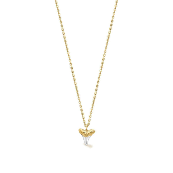 Lucy Williams Gold Shark Tooth Necklace Necklaces Missoma
