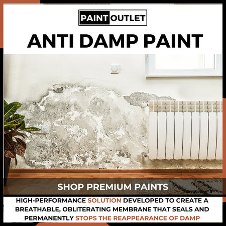 Anti Damp Paint | PaintOutlet247