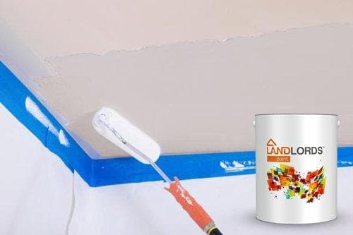 Landlord's Paint - Wall Primer Sealer - PaintOutlet247