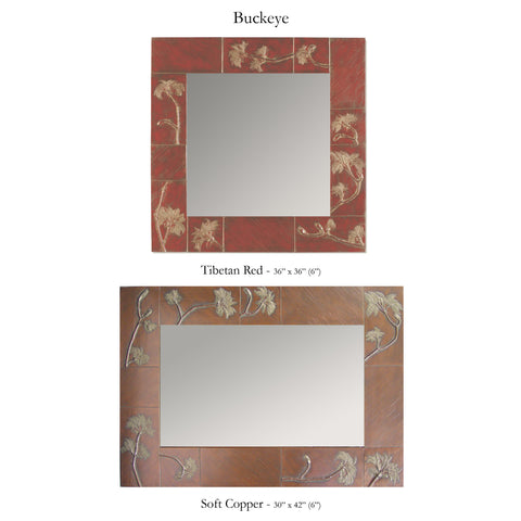 Buckeye Mirror by Deborah Childress, Blindspot Mirrors