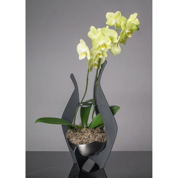 Girardini Design Orchid or Flower Display Vases in Aqua Slate or Steel Artistic Artisan Designer Vases  Slate